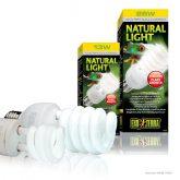PT2190-PT2191_Natural_Light_Set