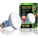 daylight_basking_spot_100w_2133