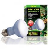 daylight_basking_spot_50w_2131