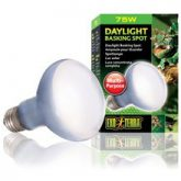 daylight_basking_spot_75w_2132