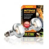 intense_basking_spot_100w_2138