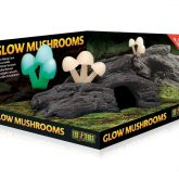 MOCK-UP_Glow-Mushrooms_PT2843