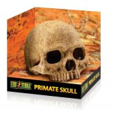 PT2855_Primate_Skull_Packaging