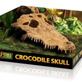 PT2856_Crocodile_Skull_Packaging