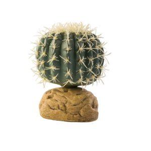 Barrel_Cactus_Small
